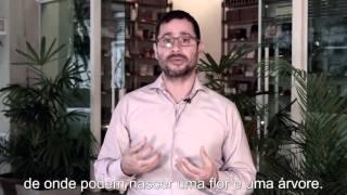 Energia do mês de Aquário | Kabbalah Centre do Brasil