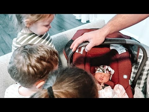 Xxx Mp4 MEETING THEIR BABY SISTER FOR THE FIRST TIME 3gp Sex