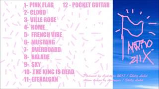 ANDROZIIX/PINK FLAG ( L'album complet )