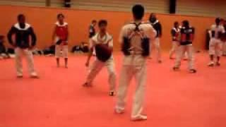 Taekwondo Iran Training