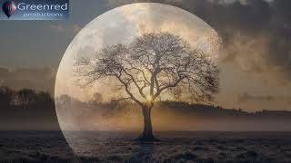 Healing Meditation Music, Deep Trance Relaxing Music for Stress Relief and Meditation