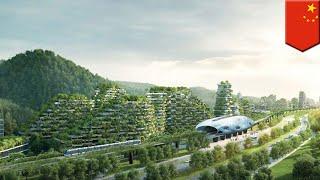 Cina membangun Kota Hutan pertama di dunia - Tomonews
