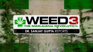 Weed 3 - CNN Special Documentary by Dr. Sanjay Gupta