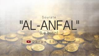 Sourate 8 - Le butin ( Saad El Ghamidi)