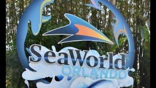 SeaWorld Orlando Tour 2016
