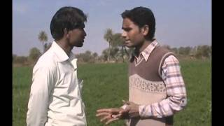 Improved Method of Coriander Cultivation Hindi Access Madhyapradesh
