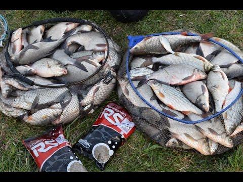 лов рыбы фидером весной