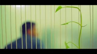 Bograr Pola Hero Alom Pran Jhal Muri Musical Parody HD.mp4