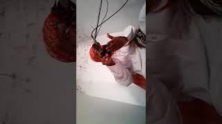 Hazrat Allama Molana Abdul Malik Siddiqui Sahib khanewali shan e Quran
