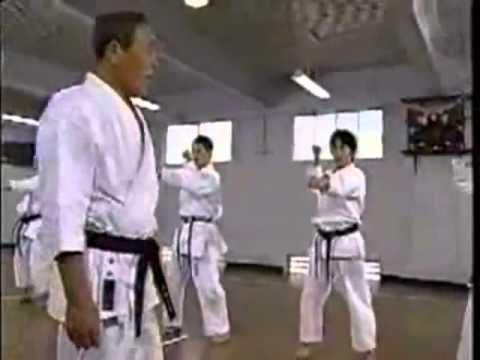 Tecnicas de defensa Karate avanzadas