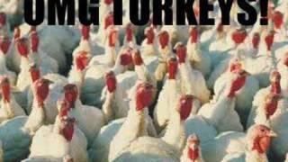 Da Turkey Song