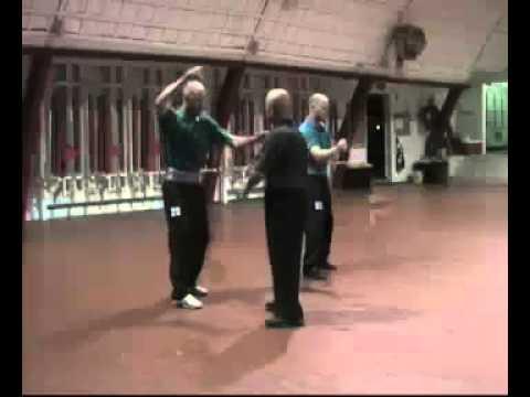 Praying Mantis Kung Fu - Purple Belt Training with Sifu Henry Sue