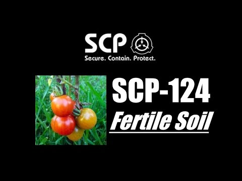 SCP Diaries - SCP-124
