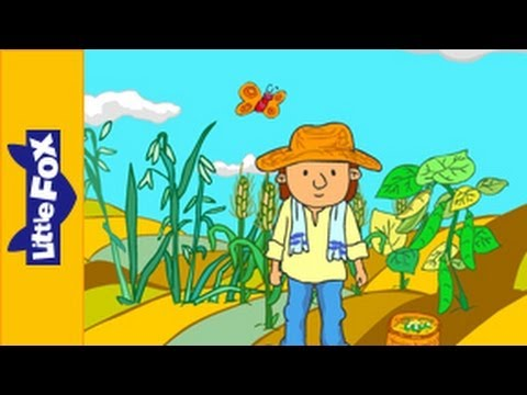 Oats, Peas, Beans and Barley Grow   Song for Kids by Little Fox