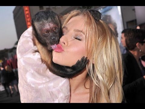 Best Fails Ever Girls and Monkey Funny Compilation - Best of Viral Video