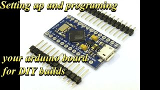 programming and setting up arduino board for builds (sim racing)