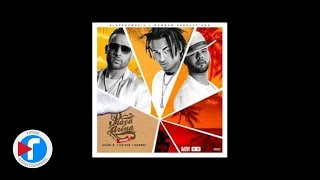 Mark B ft Gabriel & Ozuna - Playa y Arena (Remix)