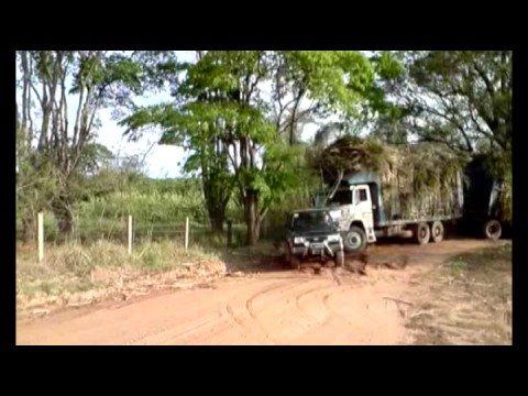 Feroza Puxando um Treminhão de 80 toneladas de cana
