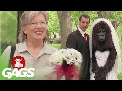 Gorilla Bride Switching Cars Jesus Brings Fish Back to Life Throwback Thursday
