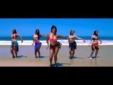 Xxx Mp4 Kutta Kamina Harami Hot Heart Touching Song Mp4 Video 3gp Sex