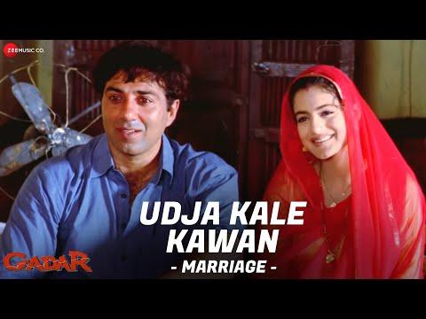 Xxx Mp4 Gadar Udd Ja Kaale Kanwan Marriage Full Song Video Sunny Deol Ameesha Patel HD 3gp Sex