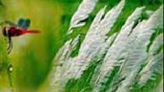 Bangla Kobita Abriti- Akashlina-Jibonanondo Dash