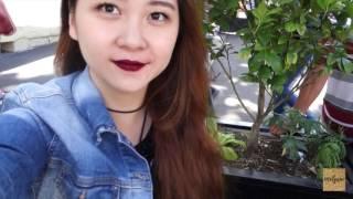 Sydney vlog #3 | The Nude Gallery