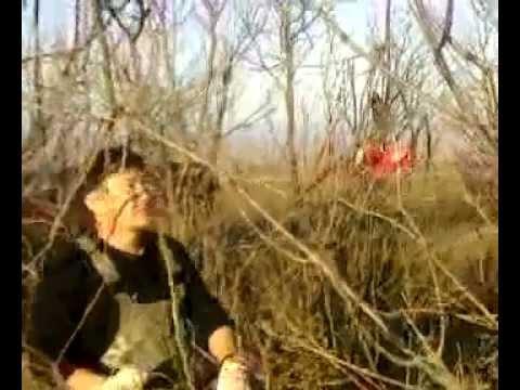 как ловить бобра на крючки