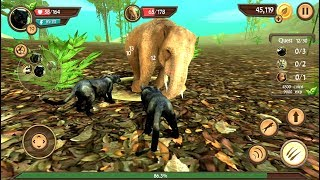 Wild Panther Sim 3D Android Gameplay HD #2