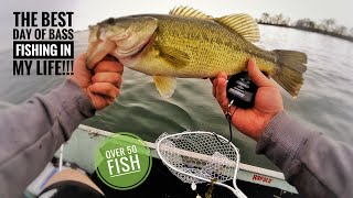 THE BEST DAY OF BASS FISHING EVER! [over 50 fish!!]