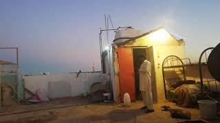 Bahadaar pathaa landing in 6:05pm in Pakistani kabootar in ksa tabuk