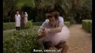 Ace Ventura Trailer en Español