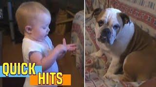 Baby Makes a Valid Argument - AFV