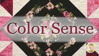 Learn Color Sense with Jennifer Bosworth of Shabby Fabrics