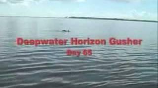 Day 65 Gulf Oil Spill With Captain Lori in Orange Beach, Alabama