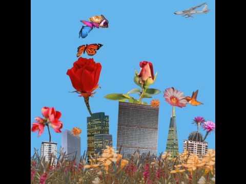 Xxx Mp4 Dua Lipa Garden Album Visual 3gp Sex