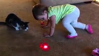 BABIES and CATS Chasing LASER Pointer Videos are so FUNNY you can die of LAUGHTER