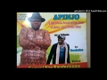 Download Video Download apinjo tribute to nze nwabulome 3GP MP4 FLV