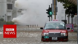 Typhoon Hato batters Hong Kong - BBC News