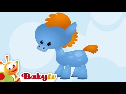 Horse - Learning Animal Sounds and Names for Kids & Toddlers | BabyTV