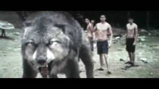 New Moon ~ Jacob kämpft gegen Paul
