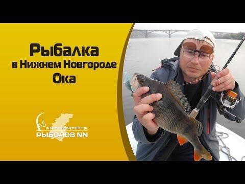 рыбалка ока видео щука