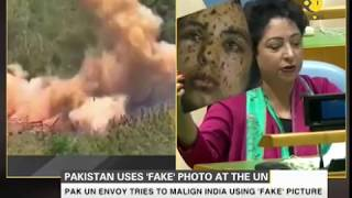 Pakistan embarrasses itself on world stage,  tries to malign India with
