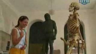 Funny Skeleton,hidden camera in museum