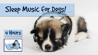 4 Hour Playlist - Sleep Music for Dogs! Watch your Dog Drift Off into a Peaceful Sleep