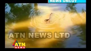 নিউজ আনকাট - সাপের শংখ লাগার বিরল দৃশ্য