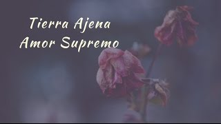 Carla Morrison - Tierra Ajena (letra)