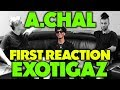 A.CHAL - EXOTIGAZ REACTION/REVIEW (Jungle Beats)
