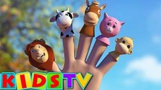 Finger Family Animals   Cartoons Finger Family   3D Nursery Rhyme   Kids Tv Nursery Rhymes