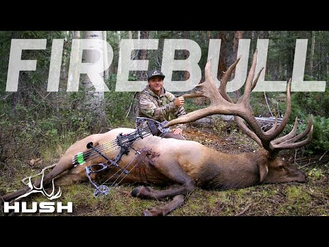 THE CRAZIEST ARCHERY ELK HUNT EVER THE FIRE BULL